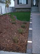 Front planting, lighting