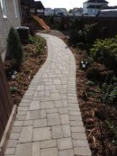 Paving stone path and planting