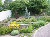 Retaining walls and planting